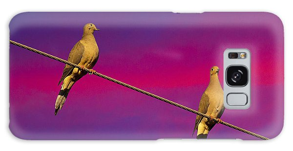 Birds On A Wire Galaxy Case