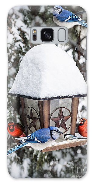 Birds On Bird Feeder In Winter Galaxy Case