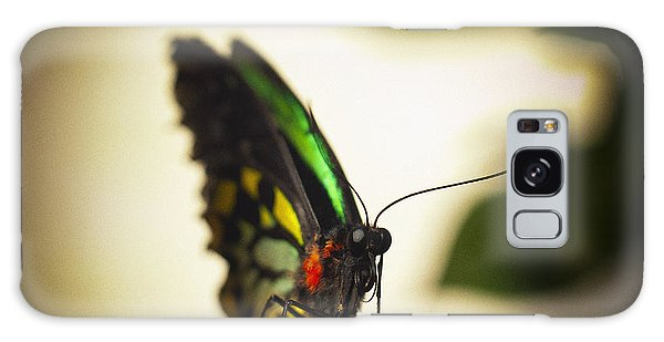 Birdwing Butterfly Galaxy Case