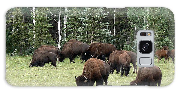 Bison At North Rim Galaxy Case by Laurel Powell