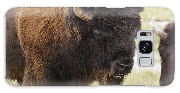 Bison From Yellowstone Galaxy Case by Belinda Greb