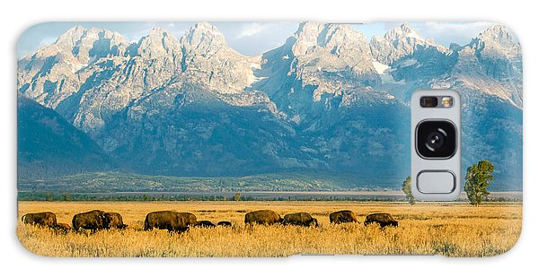 Bison Herd Galaxy Case