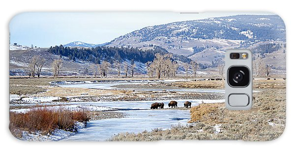 Bison In Lamar Valley Galaxy Case