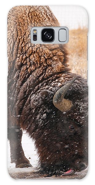 Bison In Snow_1 Galaxy Case