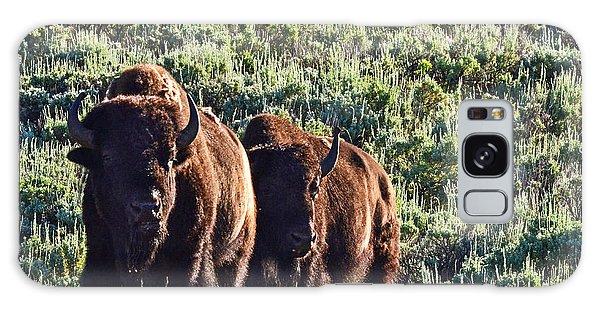Bison Morning Galaxy Case