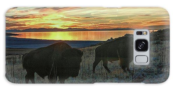 Bison Sunset Galaxy Case
