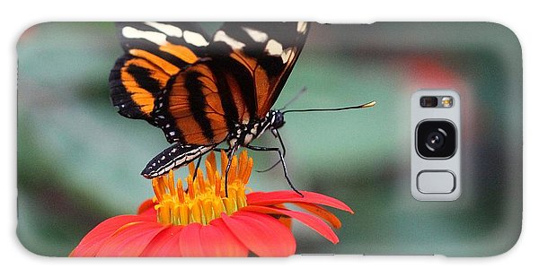 Black And Brown Butterfly On A Red Flower Galaxy Case
