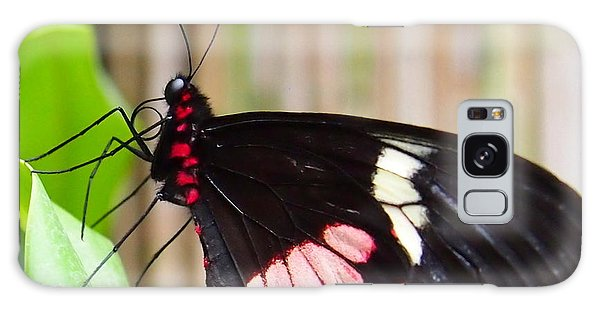 Black And Red Cattleheart Butterfly Galaxy Case by Amy McDaniel