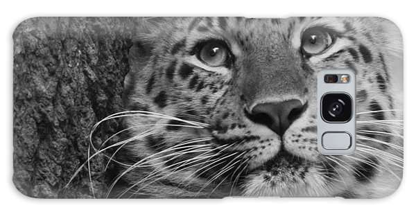 Black And White Amur Leopard Galaxy Case