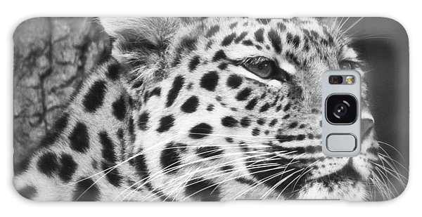 Black And White - Amur Leopard Portrait Galaxy Case