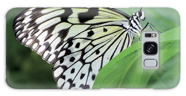 Black And White Butterfly Galaxy Case