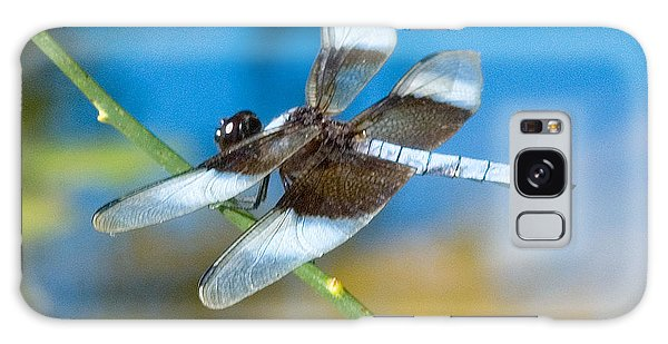 Galaxy Case featuring the photograph Black And White Dragonfly by Mae Wertz