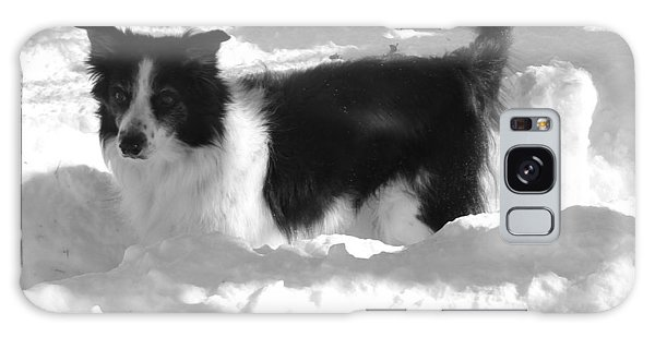 Black And White In The Snow Galaxy Case by Michael Porchik