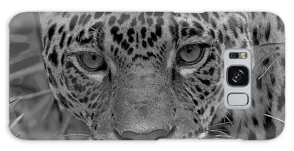 Black-and-white Jungle Cat Galaxy Case