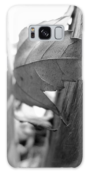 Black And White Leaf At Fort Watauga Galaxy Case