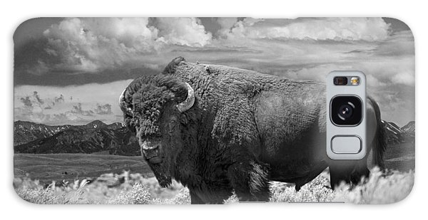Black And White Photograph Of An American Buffalo Galaxy Case