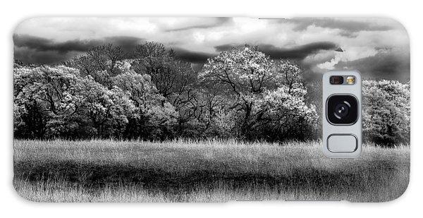 Black And White Trees Galaxy Case by Darryl Dalton