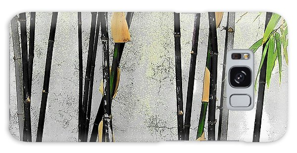 Black Bamboo #2 Sarasota Galaxy Case