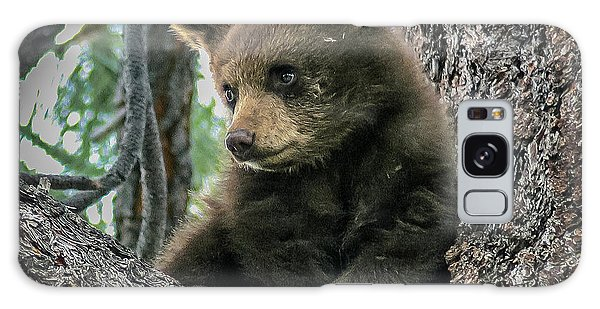 Black Bear Cub Galaxy Case