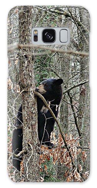 Black Bear Cub Galaxy Case by William Tanneberger