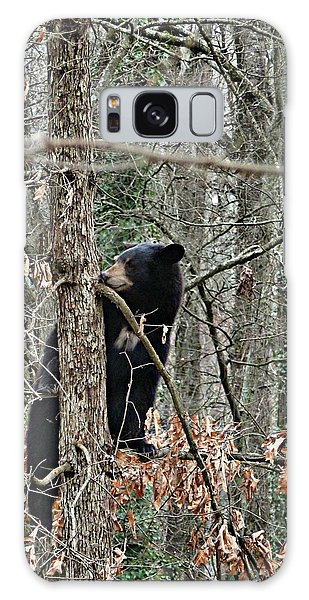 Black Bear Cub Galaxy Case