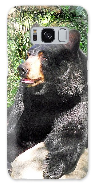 Black Bear Galaxy Case