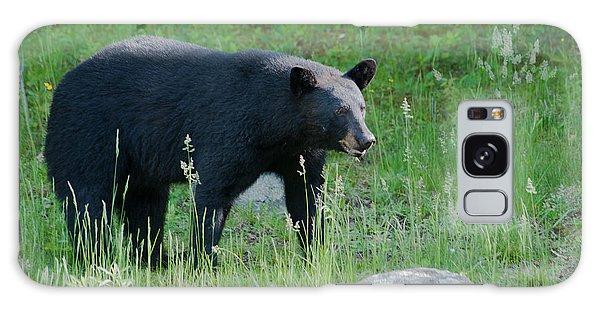 Black Bear Female Galaxy Case