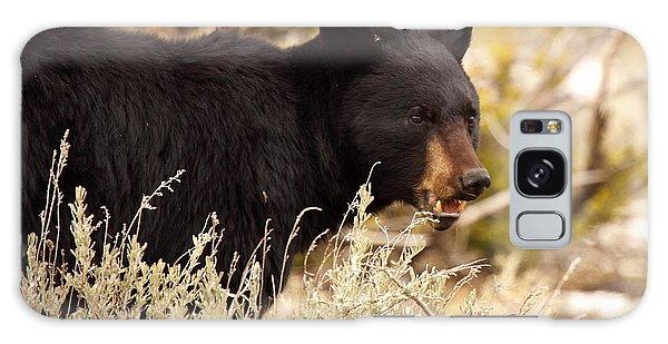 Black Bear Showing Teeth Galaxy Case by Max Allen
