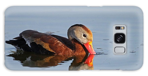 Black-bellied Whistling Duck Galaxy Case