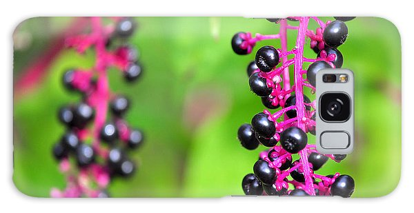 Black Berries Galaxy Case