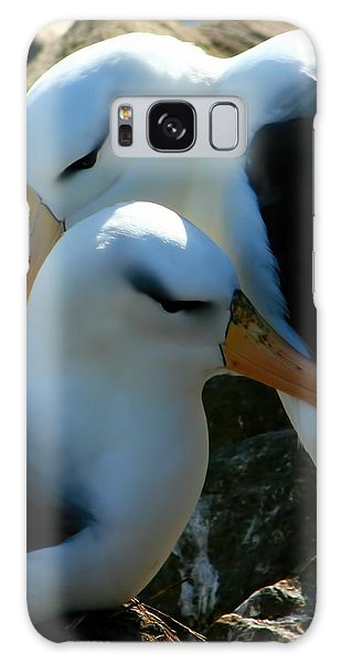 Black Browed Albatross Pair Galaxy Case
