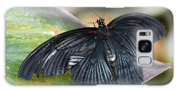 Black Butterfly Galaxy Case