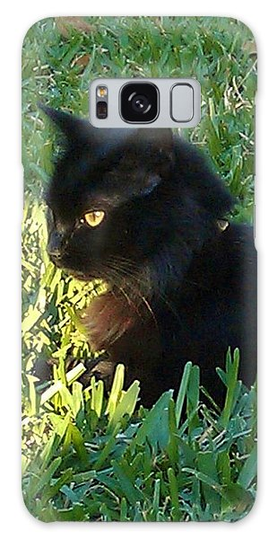 Black Cat Galaxy Case