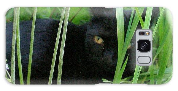 Black Cat In Long Grass Galaxy Case