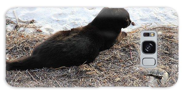 Black Cat Galaxy Case by Lorna Maza