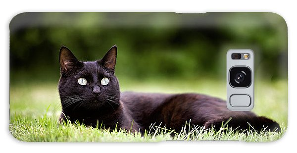 Black Cat Lying In Garden Galaxy Case by Ian Good