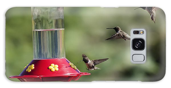 Black-chinned Hummingbird Action Panorama Galaxy Case