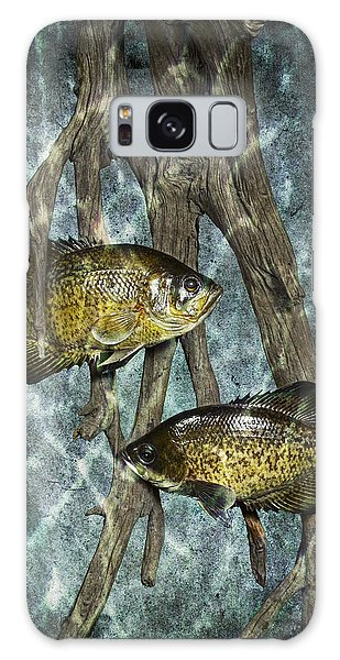 Black Crappies A Fish Image No 0143 Blue Version Galaxy Case