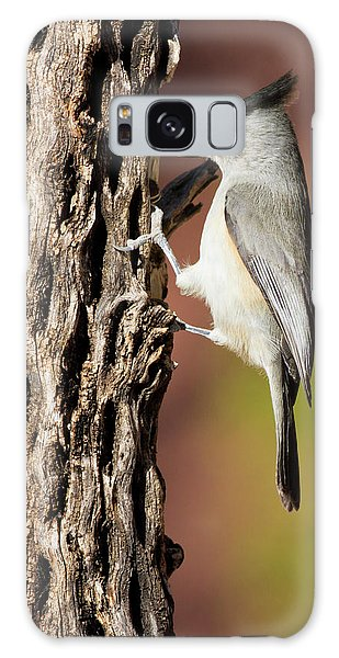 Titmouse Galaxy S8 Case - Black-crested Titmouse (baeolophus by Larry Ditto