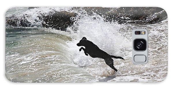 Black Dog Galaxy Case