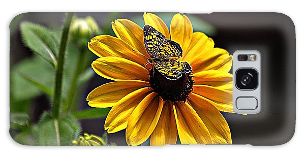 Black-eye Susan With Butterfly Galaxy Case