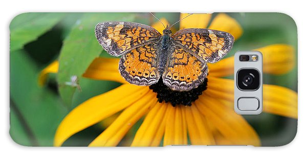 Black Eyed Susan With Butterfly Galaxy Case by Mary Bedy