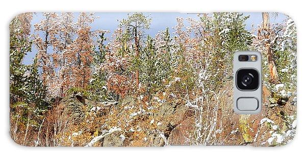 Black Hills Color Palette Galaxy Case by Clarice  Lakota