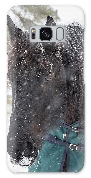 Black Horse In Snow Galaxy Case