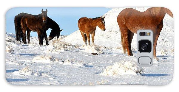 Black N' Brown Mustangs In Snow Galaxy Case by Vinnie Oakes