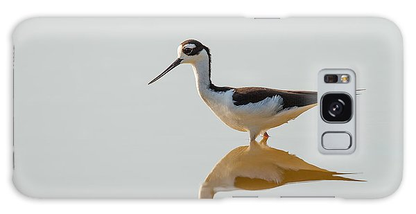 Black-necked Stilt Galaxy Case by Doug McPherson
