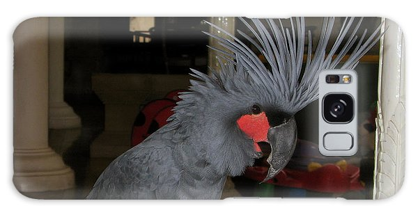Black Palm Cockatoo Galaxy Case by Sergey Lukashin