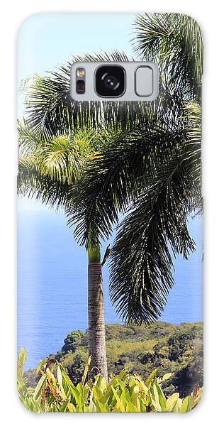 Black Sand Beach Lookout Galaxy Case
