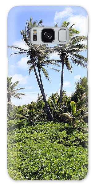 Black Sand Beach Park Galaxy Case