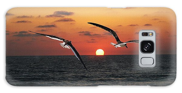 Black Skimmers At Sunset Galaxy Case by Tom Janca